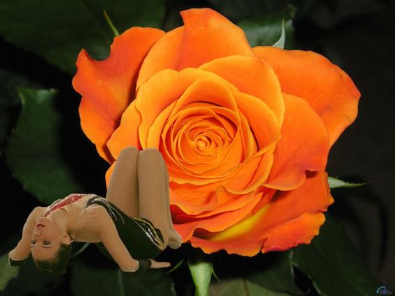 Trofeu Ciutat de Les Roses